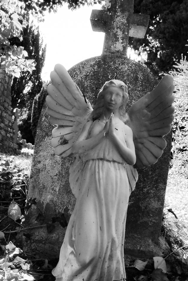 Angel in graveyard, Dublin, Ireland black and white photo