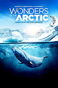 IMAX: Wonders of the Arctic