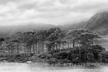 Connemara-Ireland-Lake-Mountains-Trees-panorama-black-and-white-fine-art_v2.jpg